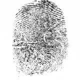 039 - Impronta